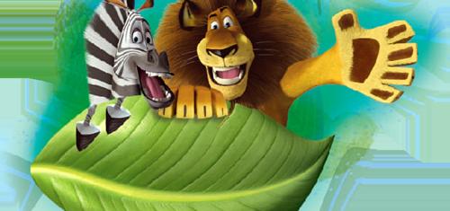 Madagascar28